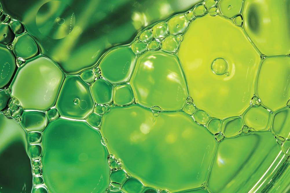 hvo Hydrotreated vegetable oil